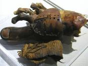 English: Cropped version of image of a prosthetic toe from ancient Egypt, now in the Egyptian Museum in Cairo. The big toe is carved from wood and is attached to the foot by a sewn leather wrapping. Original text: