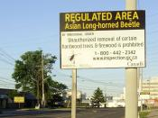 English: This regulatory notice, posted on Belfield Road in Toronto, Ontario, Canada, is part of the Canadian Food Inspection Agency's efforts to contain the current infestation of Asian long-horned beetles within the presently affected areas of the Great