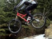English: Typical All Mountain Mountain Bike