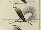 English: Plate 4 A Easy Method of Making A Salmon Fly from Blacker's Art of Fly Making