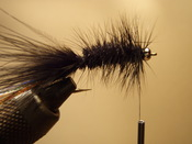 Fly Tying Process Step Six - Wrapping The Hackle