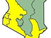 English: Map of 2007 presidential election results in Kenya. Français : Carte des résultats de l'élection présidentielle au Kenya en 2007.