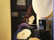 Methods of geological dating exhibit - Smithsonian Museum of Natural History - 2012-05-17
