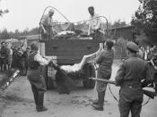 Former guards are made to load the bodies of dead prisoners onto a truck for burial, 17–18 April 1945