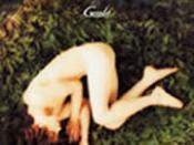 Secret Garden (Gackt song)