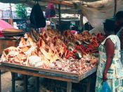 A seashell vendor in Tanzania sells to tourists seashells which have been taken from the sea alive, killing the animal inside.