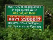 English: Defnyddiwch eich Cymraeg - Use your Welsh Detail of 488575