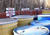 English: Cameron, LA, January 11, 2006 - The Environmental Protection Agency (EPA) has set up a hazardous waste material collection site for the disposal of toxic and otherwise hazardous materials. The site is located in the center of Cameron which was se