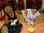 English: GMO maize test, Bourgouin-Jallieu, Isère, France. Français : Test de maïs OGM, Bourgouin-Jallieu, Isère, France.