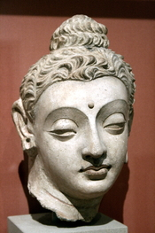 English: Head of the Buddha from Hadda, Central Asia, Gandhara art, Victoria and albert Museum (London)