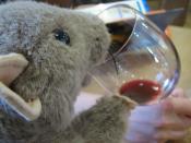 Image of Shiraz wine and a stuffed animal.