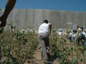 Palestinian children running towards the barrier, August 2004