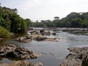Epulu river flowing through the Okapi Fauna Reserve, Democratic Republic of the Congo