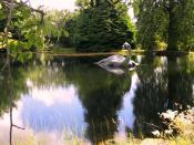foto van Nessie - wie twijfelt nu nog?