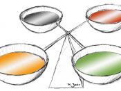 English: diagram to visualise the ancient Greek concept of the equilibrium of the four humours: blood (red), yellow bile, black bile, and phlegm (green)