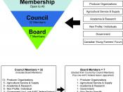 English: Organizational Structure