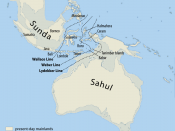 The continent of Sahul before the rising ocean sundered Australia and New Guinea after the last ice age