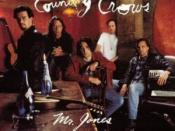 Mr. Jones (Counting Crows song)