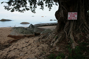 Side trip to Tioman Island