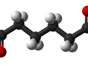 Ball and stick model of the adipic acid molecule.