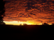 English: Sunrise in upstate New York, United States Español: Salida del sol en el estado de Nueva York, Estados Unidos Français : Lever du soleil dans l'État de New York, États-Unis d'Amérique