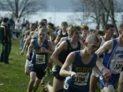 English: New York State Federation Cross Country Meet