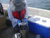 Assessing Pre-Oil Baseline Levels