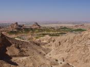 Oasis of Green Mubazzarah near Al Ain