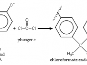 English: Bisphenolate A end of growing polymer plus Phosgene forms Chloroformate end in a propagation step of polymerization to form Polycarbonate.