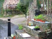 English: Roadside sales, Maidencombe Plants and produce for sale near the Thatched Tavern.