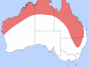 English: Distribution map of the Giant Grasshopper (Valanga irregularis) drawn after: Giant or Hedge grasshopper: Valanga irregularis (nymph), Department of Agriculture, Fisheries and Forestry, Australian Government Deutsch: Verbreitungskarte von Valanga