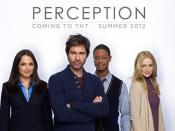 Perception (2012 TV series)