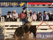 English: Bull Riding in Del Rio, Texas.