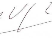 Mario Vargas Llosa signature
