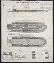 Stowage of the British slave ship Brookes under the regulated slave trade act of 1788.