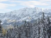 Strong Bonds retreat in Garmisch, Germany, January 2011