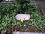 Pound's grave on the Isola di San Michele