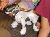 AIBO playing with children