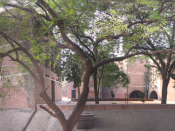Atmospheric image from the Indian Institute of Management, Ahmedabad, Gujarat, India.