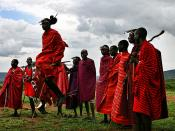 Dmitri Markine.com http://www.dmitrimarkine.com Masai Dance. Maasai Mara Reserve,Kenya. The higher you jump the more women you can marry...