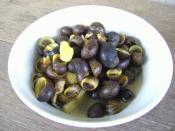 Español: Un plato de nerites, género Neritina del Río Rajang, Sarawak, Malasia.