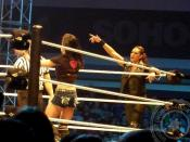WWE Minehead - The Bella Twins vs AJ Lee and Tamina - 16 Nov 13 - 005