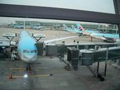 Korean Air planes awaiting departure
