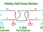 English: Hadley cell cross-section.The Hadley cell is one of three atmospheric circulation cells which transport heat poleward and drive Earth's weather. Created with Photoshop. 2004 D. Windrim Română: Anticiclon Русский: Ячейка Хадли в разрезе. Ячейка Ха