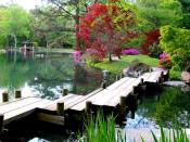 Japanese Garden in Maymont Park, Richmond, Virginia, United States.
