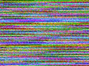 A corrupted JPEG photograph. Result of a photo being incorrectly saved by a digital camera. Corrupt Huffman code.