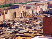 Tanneries of Marrakech