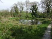 English: Parton's Pool Memorial pool for Dave Parton made available to the village of Norton in Hales by his family.