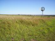 A windmill near Allora, on the Darling Downs, Queensland