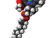 Space-filling model of the chlorophyll b molecule, a common form of chlorophyll, a yellow-green pigment that plants use for photosynthesis. Colour code (click to show) : Black: Carbon, C : White: Hydrogen, H : Red: Oxygen, O : Blue: Nitrogen, N : Green: M